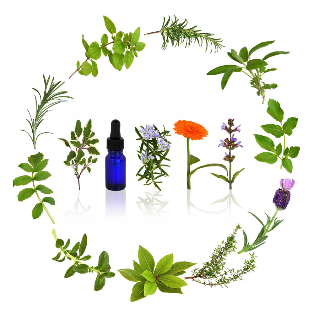 OnTarget Massage Aromatherapy