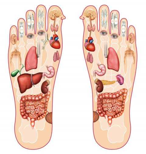 How Does a Reflexology Session Work?